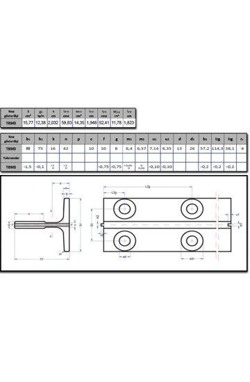 T90/B Asansör Klavuz Ray