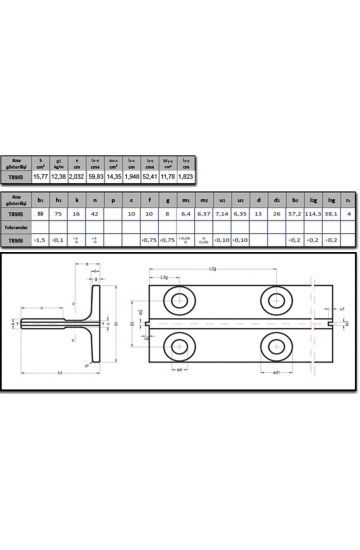 T89/B Asansör Klavuz Ray